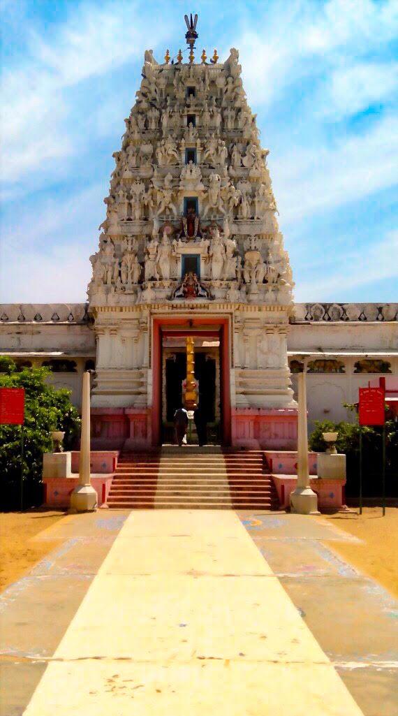 old-rangji-temple-pushkar-closeup