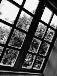 A glass window