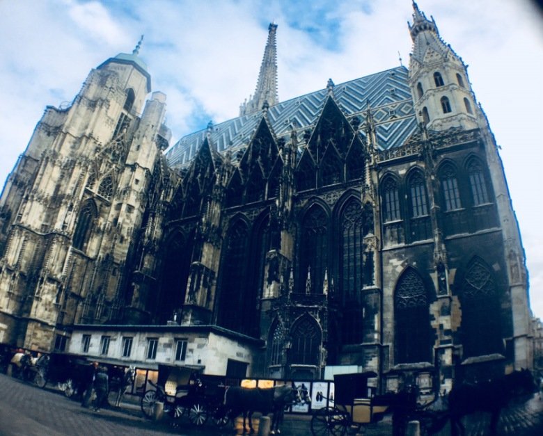 St Stephans Cathedral Fish-Eye View-Vienna