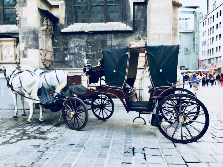horse-wagon-vienna-austria