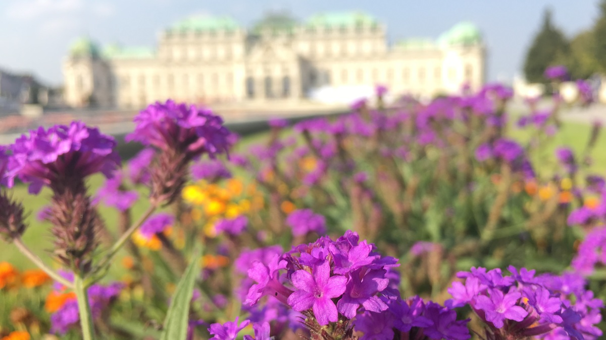 20+ Instagrammable pictures from Belvedere Palace, Vienna